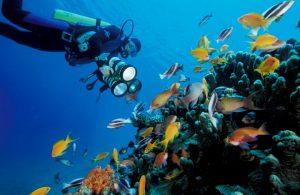 underwater-via-visitjo1