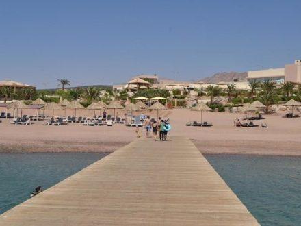 berenice-beach-club